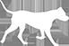 Dog Facts Logo