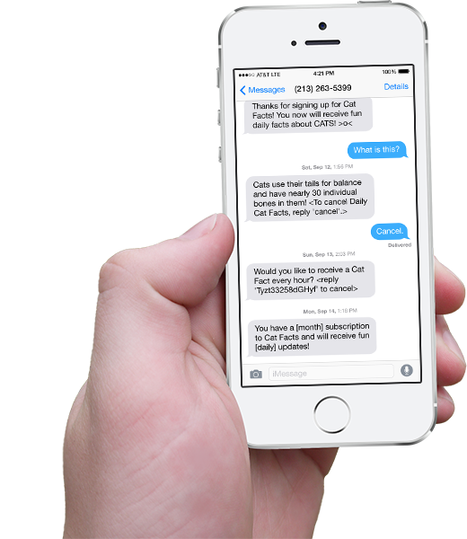 Hand holding iPhone with scrolling Dog Facts text messages